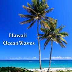 ハワイの波の音