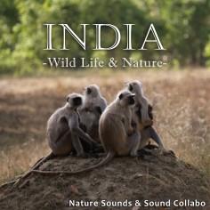 インド ~野生動物と自然~