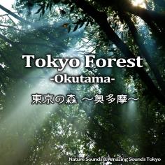 東京の森 ~奥多摩~