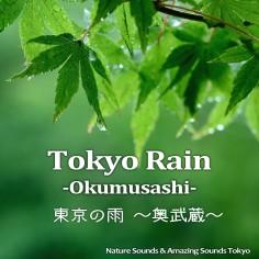 東京の雨 ~奥武蔵~