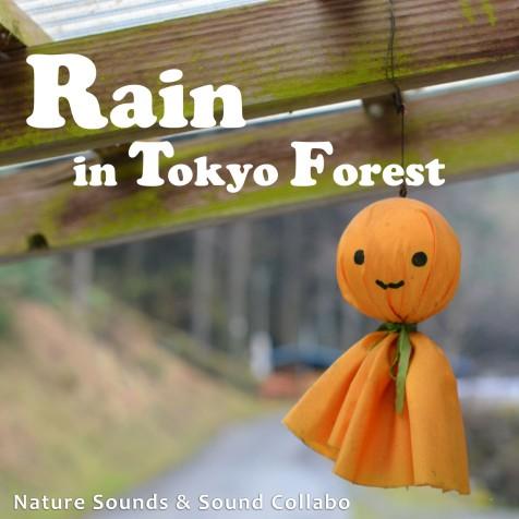 Rain in Tokyo Forest